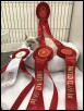 Kernow Cat Club Show April 2018